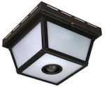 Heath Co Motion Activated Outdoor Light