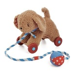 Bud the Wheely Cute Pull Toy Recall [Canada]