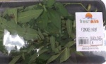 5952 - freshKISFingerMint