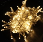 NexScene LED String Fairy Light Recall [Canada]