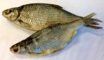 Chilled Dried Salted Common Roach Fish Recall [UK]
