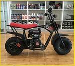 Assassin Scorpion Mini Bike Recall [Australia]