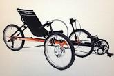 TerraTrike branded Adult Tricycle Recall [US]