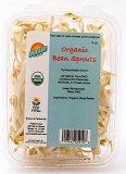 Fullei Fresh Organic Bean Sprout Recall [US]