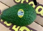 Henry Avocado Corp. Avocado Recall [US]