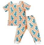 SAMpark Children's Pajamas Recall [US]