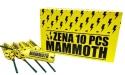 Zena branded Mammoth Fireworks